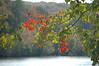 TOUCH OF FALL<br /> <br /> Went on a walk today...what a beautiful day!<br /> The leaves are just starting to change.