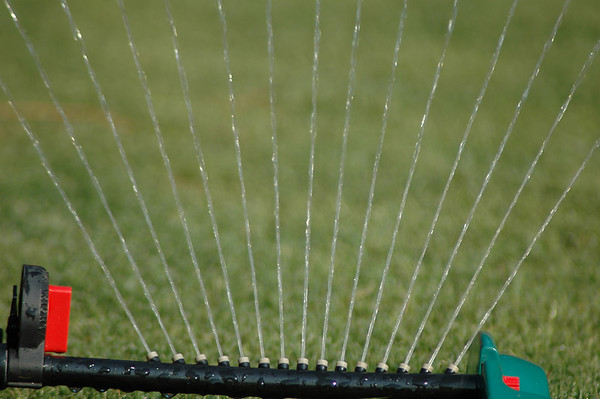 """Tuesday, June 26<br /> SPRINKLER WATER<br /> <br /> <br /> """"Summer afternoon - summer afternoon; to me those have always been the two most beautiful words in the English language.""""<br />   ~Henry James"""